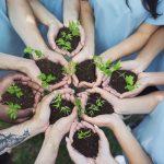 6 Cara Anak Muda Mendukung Upaya Pelestarian Lingkungan Hidup
